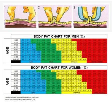 Miernik tkanki tłuszczowej - Fałdomierz - Kaliper